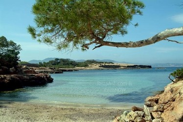 The Most Beautiful Beaches to Discover on Ibiza