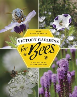 Bring Back the Bees - How to Help Bee Populations With Your Garden