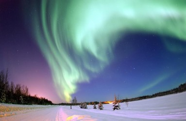 Shining a Northern Light on Business