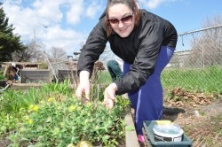 Robin Silver says her plot produces enough food for herself and to share with other people.