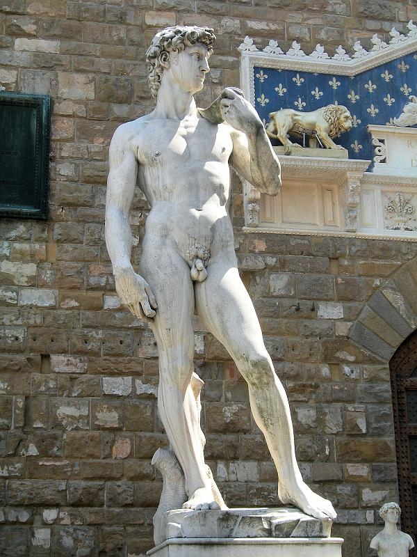 David by Michelangelo in the Piazza della Signoria, Firenze