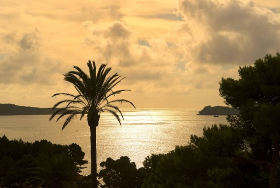 Visit Me Ibiza: Celebrate Summer in Style