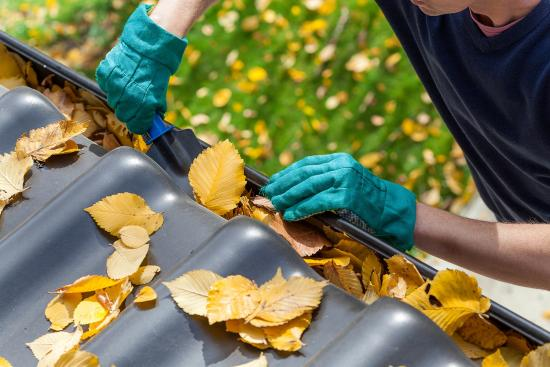 Top home maintenance tips for spring