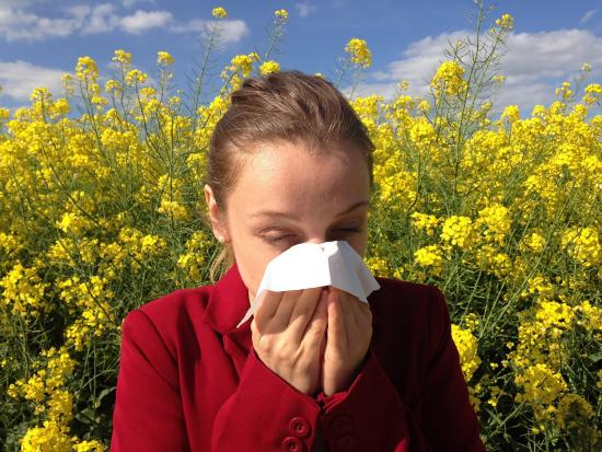 Outdoor versus indoor allergies