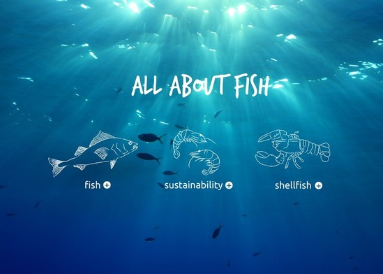 """All About Fish"" Promotes Sustainability with Energy and Zest"