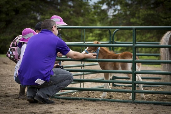 Ottawa Horse Day: A Big Hit with Families