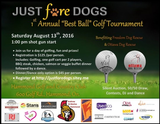 First Annual Just Fore Dogs Golf Tournament Benefits Homeless Dogs