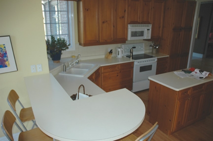 Fabritec-tastic: A Kitchen Cabinet Renovation