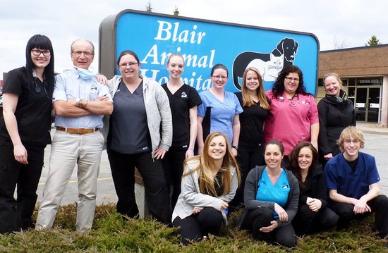 Blair Animal Hospital: Customizing Pet Care