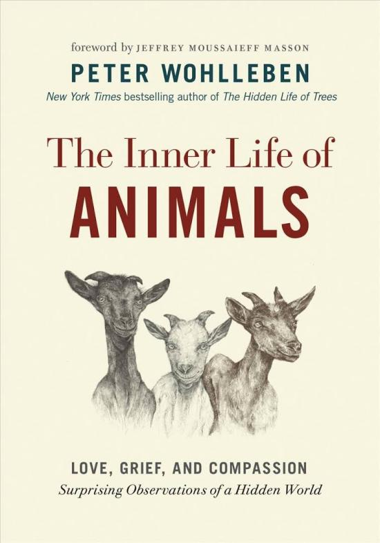 Book Review: The Inner Life of Animals