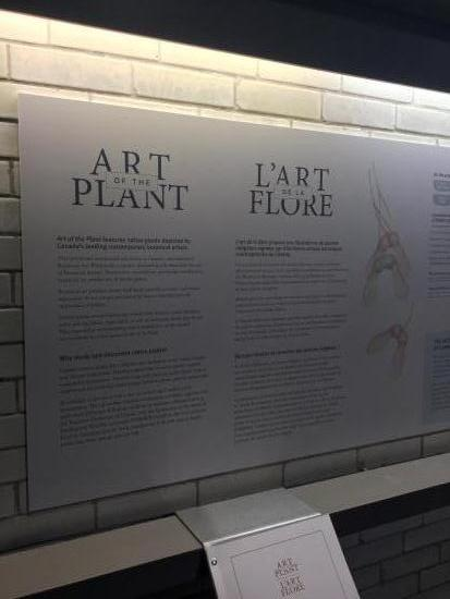 Botany Takes Center Stage for 'Art of the Plant'