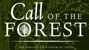 Film Review: Call of the Forest - The Forgotten Wisdom of Trees
