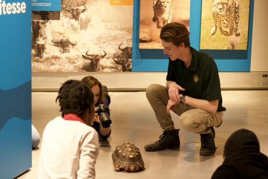 Canadian Museum of Nature and Little Rays Nature Centres Entertain and Educate While Protecting Exotic Animals