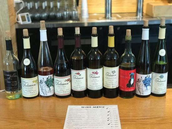 Wine not take a road trip to Cayuga County