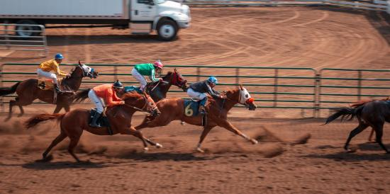 The Debate Continues: Is Horse Racing A Kind Of Sport Or A Bet Game?