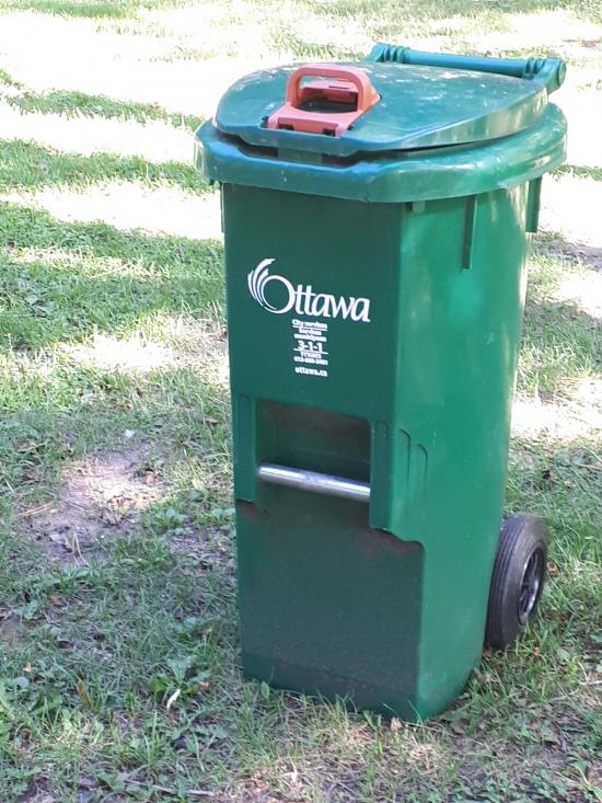 Do plastic bags in green bins defeat the purpose