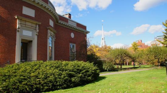 Harvard certified digital marketing course
