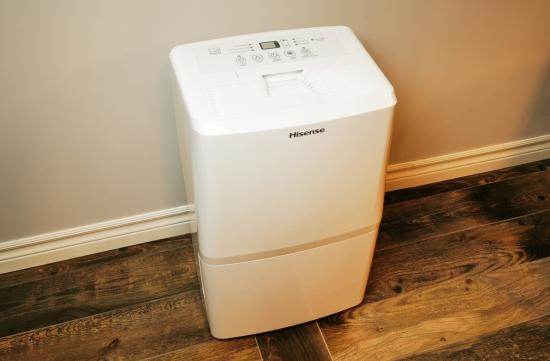 A dehumidifier is the appliance you didn't know you need