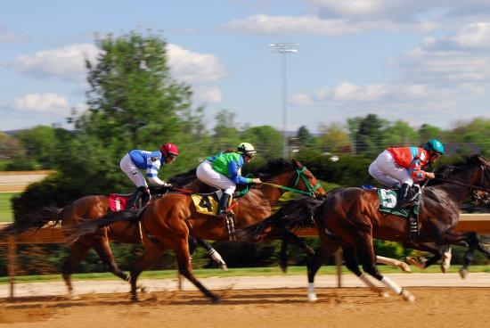 "Top 8 Canadian ""Bet on Horses"" Racing Games To Follow"