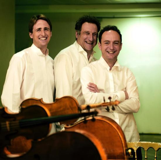 Music and Beyond Spotlight: The Vienna Piano Trio