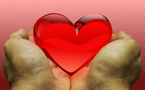 Montfort Hospital is a leader in saving organ donations