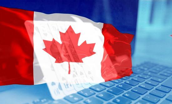 Casimoose: here to revolutionize the online casinos affiliate marketing in Canada?