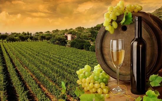 Ontario Wine Month: The Whites