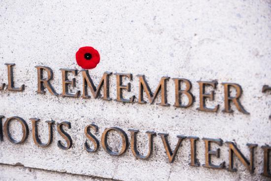 Remembrance Day Round Up