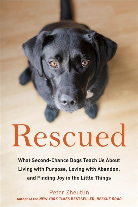 Book Review: Rescued