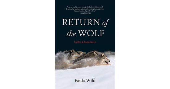 Return of the Wolf — Conflict & Coexistence