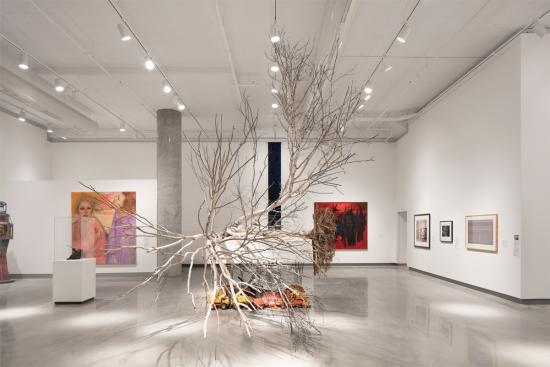 Revitalized Ottawa Art Gallery Spotlights 6,500 Years of Regional Art