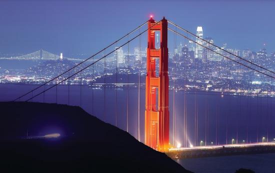 Succulent San Francisco