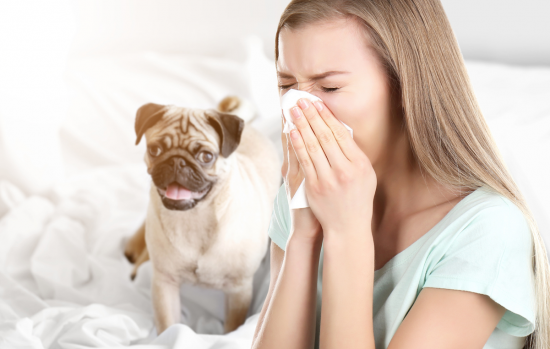 Allergy problems: 13 must-know tips for how to stop an allergy attack
