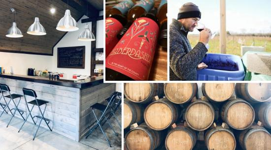 Traynor Family Vineyard — A hands-on approach to winemaking