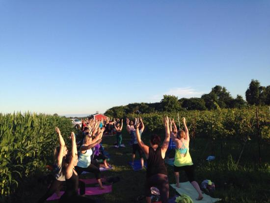 Vineyards and Vinyasa. What's not to love?