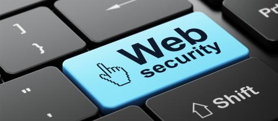 Canadian Businesses Need Canadian Web Hosting Solutions