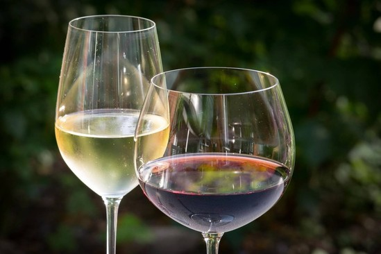 If I only had $100, I would buy….wines from Argentina!