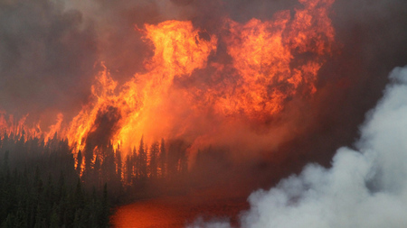 hi-forest-fires-cp00993379_450x450