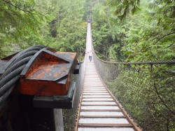 Vancouver-Lynn Canyon Bridge
