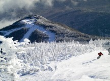 a little whiteface - photo from ORDA