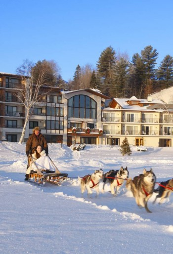 Dogsled rides for the family