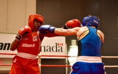 Ottawa Boxers Bring Home Gold