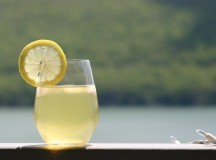 A Refreshing Response – The National Capital Commission Does the Right Thing for Lemonade Kids
